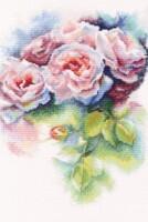 http://data29.i.gallery.ru/albums/gallery/235666-219e3-101214273-200-u95264.jpg