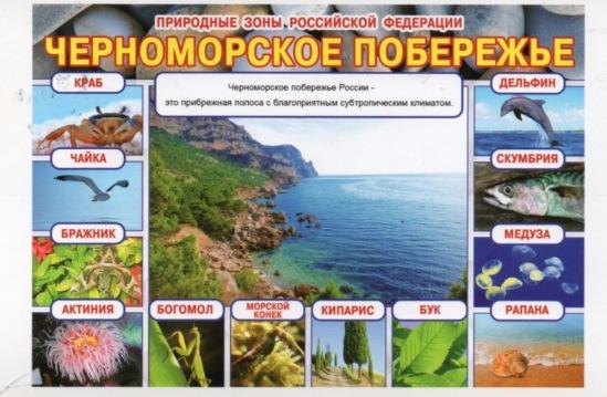 http://data29.i.gallery.ru/albums/gallery/358560-2e932-102076497-m549x500-ub8819.jpg